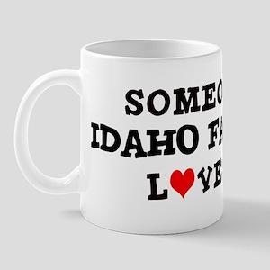 Someone in Idaho Falls Mug