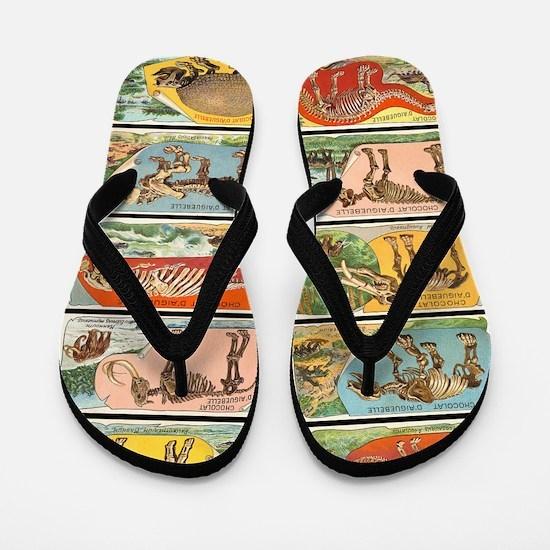 Vintage Dinosaurs v2 Flip Flops
