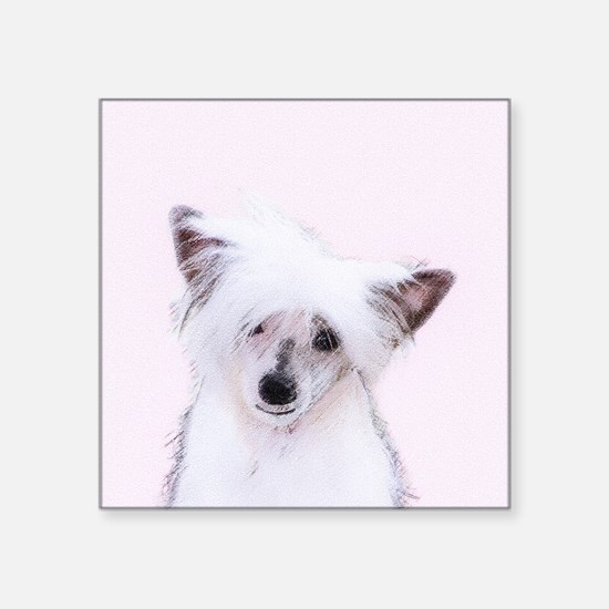 "Chinese Crested (Powderpuff Square Sticker 3"" x 3"""