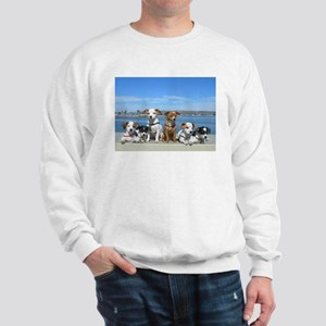 Puppies at Beach 4A Sweatshirt