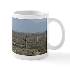 Nature Views of Mexico Mug