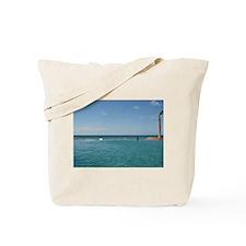 Views of Mexico Tote Bag