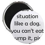 Dog Situation Magnet