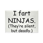 Fart Ninjas Rectangle Magnet