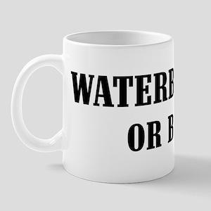Waterbury or Bust! Mug