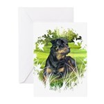 Rottweiler (Denali) Greeting Cards (20)