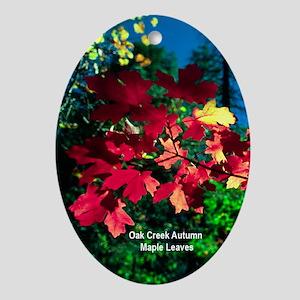 Oak Creek Autumn Maple Leaves Ornament (Oval)