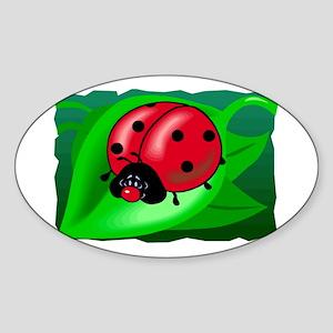 Ladybug102 Oval Sticker