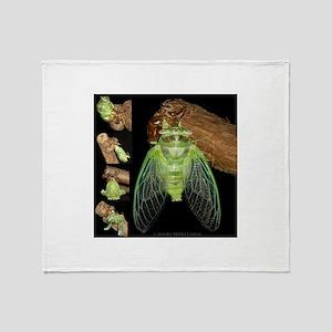 Metamorphosis of Cicadas Throw Blanket