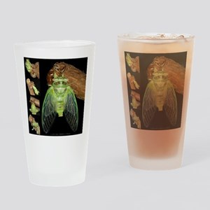 Metamorphosis of Cicadas Drinking Glass