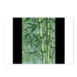 Bamboo Stalks Postcards (Package of 8)