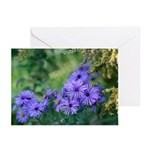 Blue Wildflowers Cards (Pk of 10)