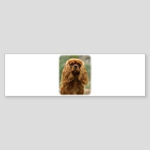 Cavalier King Charles Spaniel 9F51D-10 Sticker (Bu