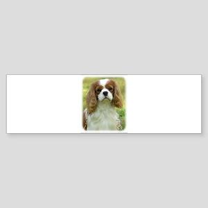 Cavalier King Charles Spaniel 9P032D-036 Sticker (