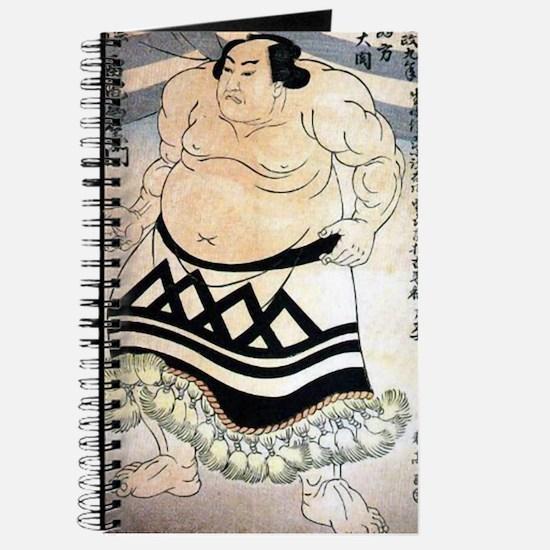 Raiden sumo Journal