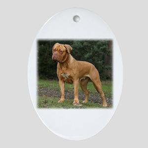 Dogue de Bordeaux 9Y201D-193 Ornament (Oval)
