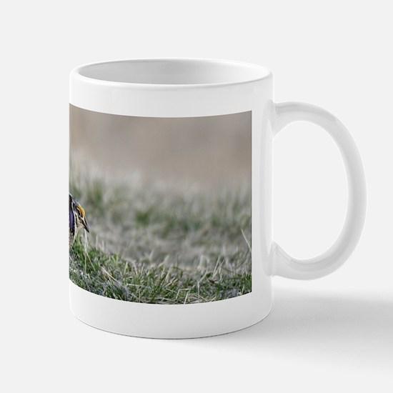 sharptail-6 Mugs