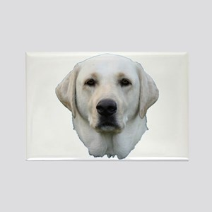 White lab 3 Rectangle Magnet