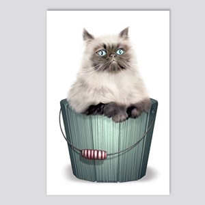 Himalayan Kitten Postcards (Package of 8)