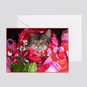Maine Coon Cat Valentine Card