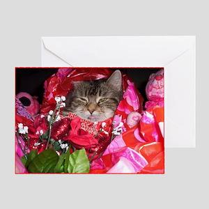 Cat valentine greeting cards cafepress maine coon cat valentine card m4hsunfo