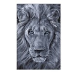 Bold Lion Postcards (Package of 8)