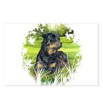 Rottweiler (Denali) Postcards (Pkg of 8)
