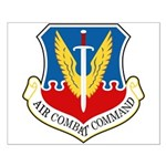 Air Combat Command Small Poster