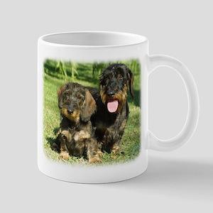 Dachshunds 9F18D-07 Mug