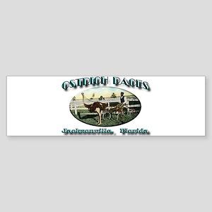 Ostrich Races Sticker (Bumper)