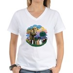 StFrancis2 / Women's V-Neck T-Shirt