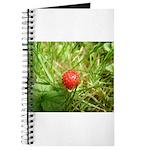 Sweet Berry Journal