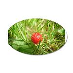 Sweet Berry 38.5 x 24.5 Oval Wall Peel
