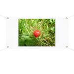 Sweet Berry Banner