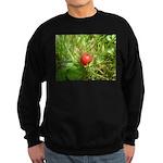 Sweet Berry Sweatshirt (dark)