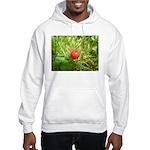 Sweet Berry Hooded Sweatshirt