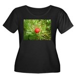 Sweet Berry Women's Plus Size Scoop Neck Dark T-Sh