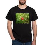 Sweet Berry Dark T-Shirt