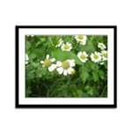 White Flower Framed Panel Print
