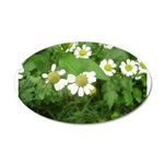 White Flower 22x14 Oval Wall Peel