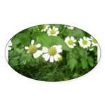White Flower Sticker (Oval 50 pk)
