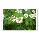 White Flower Sticker (Rectangle)