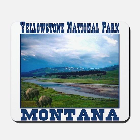 Yellowstone National Park Mousepad