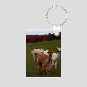 3 Alpacas Aluminum Photo Keychain
