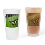 Anise Swallowtail Butterfly Drinking Glass