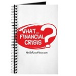 What Financial Crisis Journal