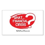 What Financial Crisis Sticker (Rectangle)