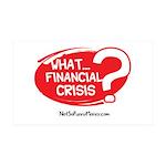 What Financial Crisis 38.5 x 24.5 Wall Peel
