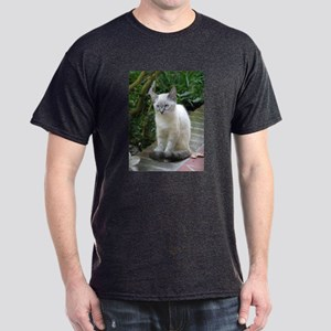 Blue Eyed Kitten - Dark T-Shirt