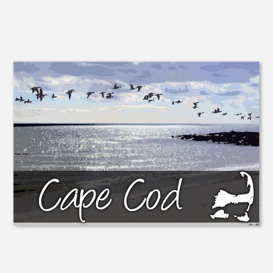 Cute Seagull Postcards (Package of 8)